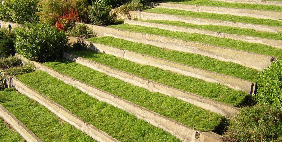 cesped jardín escalera 950x480 Galería