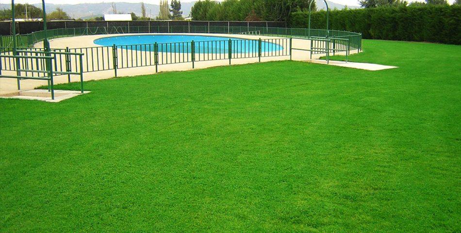 cesped pasto piscina 1 950x480 Galería