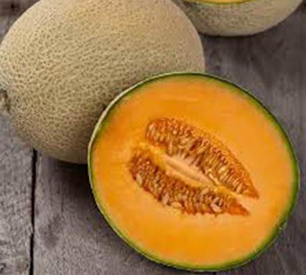 44 Melón Cantaloupe Hales Best Jumbo Melón
