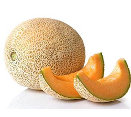 45 Melón Cantaloupe Topmark Melón