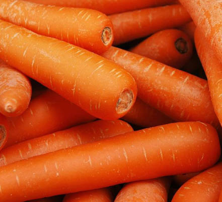 68 zanahoria nantesa Zanahoria